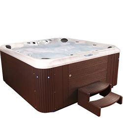 Essential Hot Tubs – Sanctity – 80 Jets, Sterling Silver Shell With Espresso Cabinet ...
