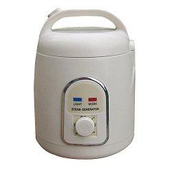 Vogvigo Sauna Steamer Portable Pot Machine Evaporator Explosion-Proof for Home Personal SPA Show ...
