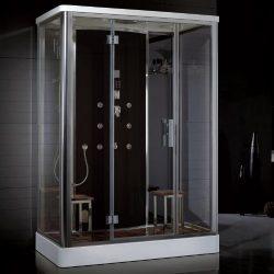 Ariel Platinum Series DZ956F8-BLK Steam Shower