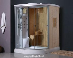 Deluxe Shower / Dry Sauna Combo System + Steam Cabin. B001