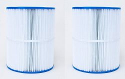 Unicel C-8465-2 Replacement Filter Cartridge (2 Pack)