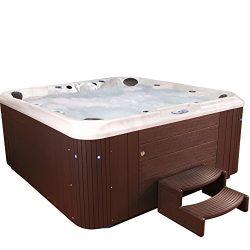 Essential Hot Tubs SS3040807003 Regent-80 Jet Hot Tub, Espresso