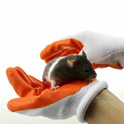 OMEM Protective Gloves to Avoid Biting the Hands by Hamsters(1 Pair)