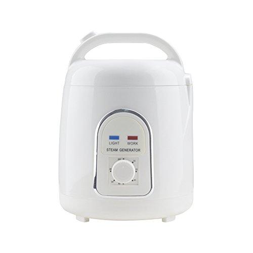 YYYBW Vogvigo 1.5L Portable Sauna Steamer Steam Generator for Home Spa Sauna Tent