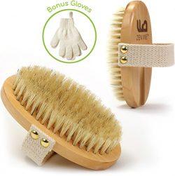 Premium Dry Brushing Body Brush, For Lymphatic Drainage & Cellulite Treatment! Plastic-Free  ...