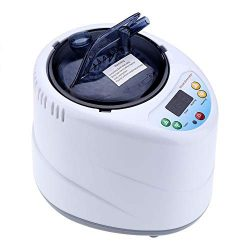 FTVOGUE 2L Sauna Steamer Stainless Steel Fumigation Pot Machine Home Steam Generator for Spa Ten ...