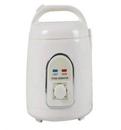 850W 1.5L Sauna Steam Bath Machine Portable Sauna Steam Generator Steam Sauna Box infrared sauna ...
