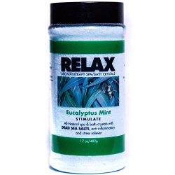 Eucalyptus Mint Aromatherapy Bath Salts -17 Oz– Natural Minerals for Soaking Aches, Pains &  ...