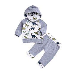 Infant Toddler Boys Girls Sweatshirt Set Cartoon Dinosaur Hooded Tops Pullover Pants Outfits Set ...