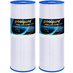 POOLPURE Spa Filter for Hot Tubs Replaces Pleatco PRB25-IN Unicel C-4326 FC-2375, 25 sq ft, Pent ...