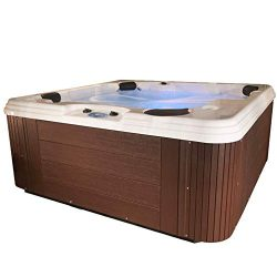 Essential Hot Tubs 50 Jets Polara Sterling Silver Shell, Espresso (Renewed)