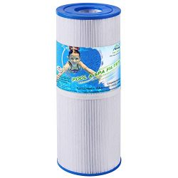 TOREAD Spa Filter Replacement for Pleatco PRB50-IN, Unicel C-4950, Filbur FC-2390, Guardian 413- ...