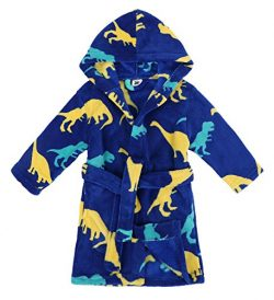 Verabella Boys Girls' Fleece Printed Hooded Beach Cover up Pool wrap,Dino-Land,M