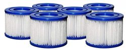 SUNSET FILTERS Type VI Spa Filter Replacement Cartridge – for SaluSpa, Lay-Z-Spa (6-Pack)